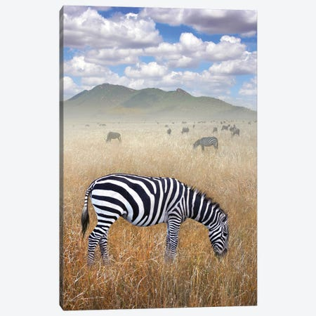 Once Upon A Time In Kenya I Canvas Print #BHE297} by Ben Heine Art Print