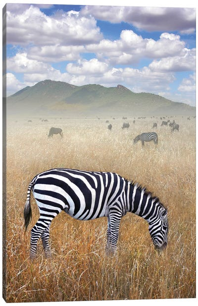 Once Upon A Time In Kenya I Canvas Art Print
