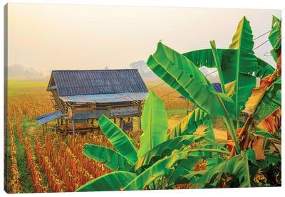 Thailand Photography 159 Canvas Art Print