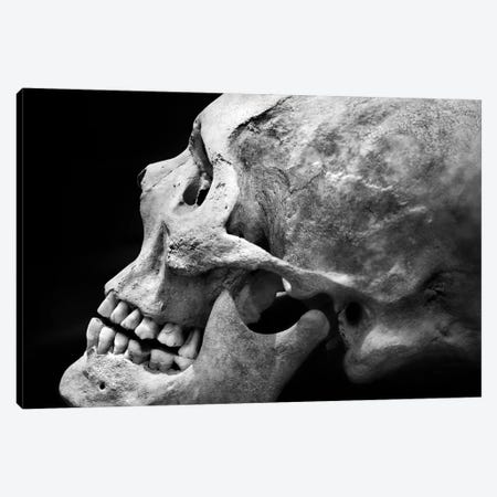 The Beauty Of Bones II Canvas Print #BHE332} by Ben Heine Art Print