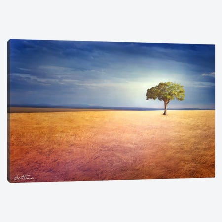 Spirit Of The Earth Canvas Print #BHE41} by Ben Heine Art Print