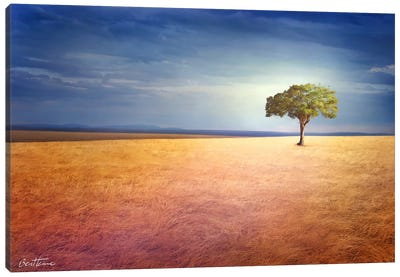Spirit Of The Earth Canvas Print #BHE41