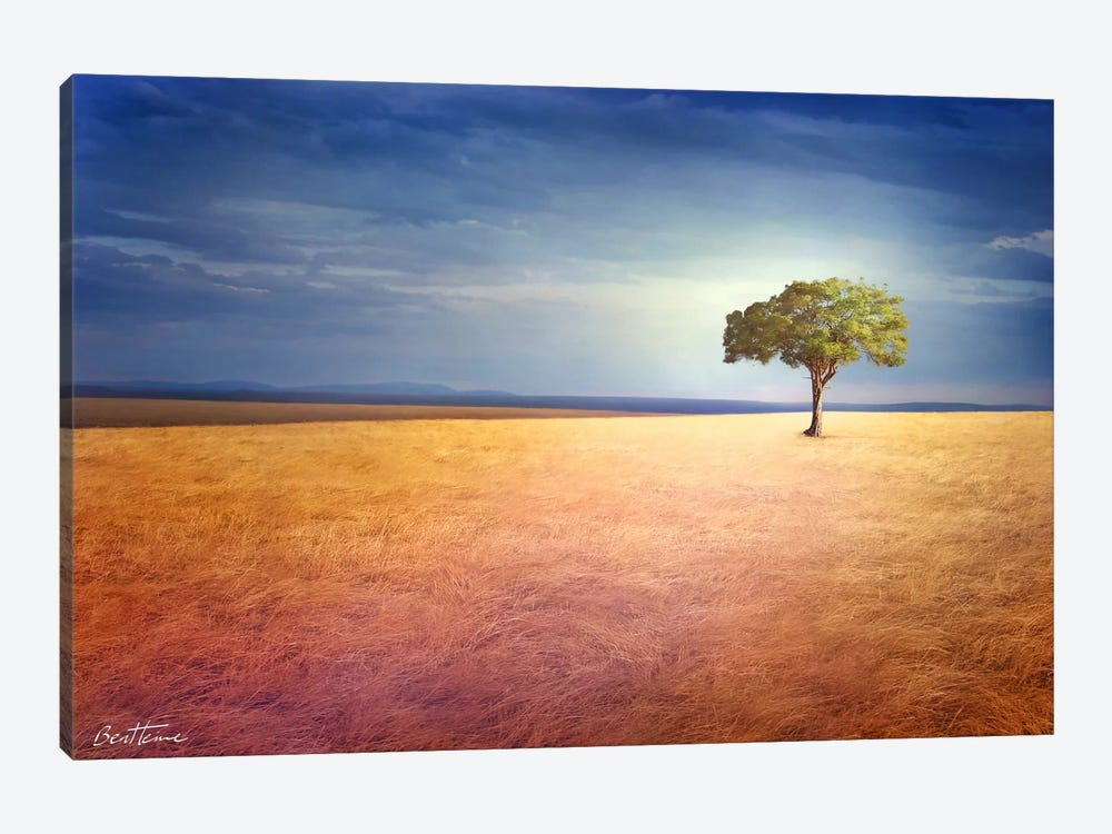 Spirit Of The Earth by Ben Heine 1-piece Canvas Art