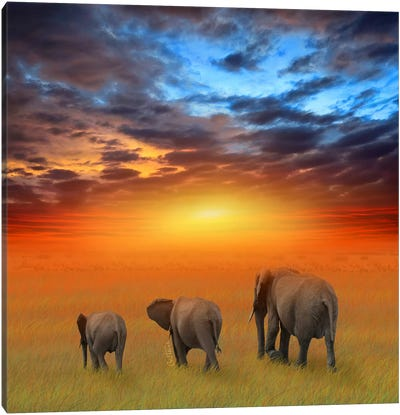 The Future Is Bright Canvas Art Print