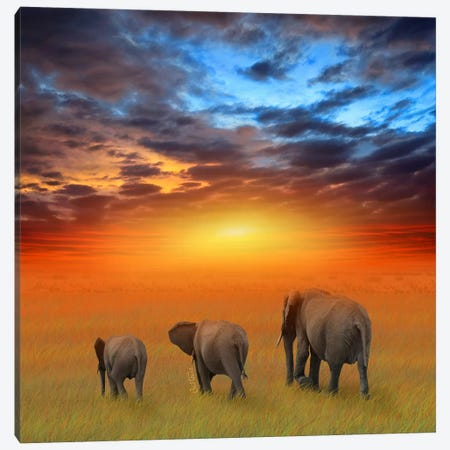 The Future Is Bright Canvas Print #BHE42} by Ben Heine Canvas Art Print