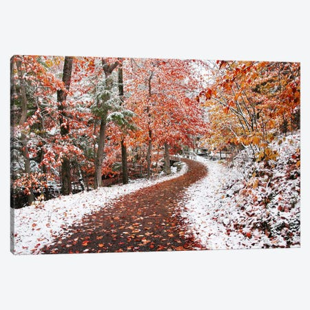 Two Seasons Canvas Print #BHE43} by Ben Heine Canvas Print