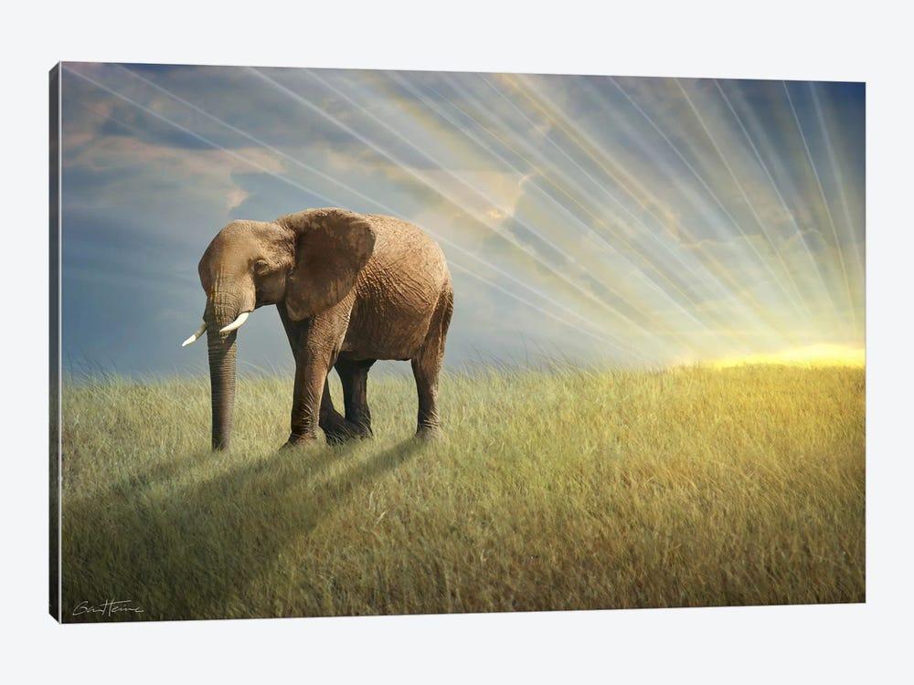 Walk With The Light by Ben Heine 1-piece Art Print