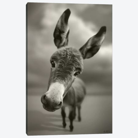 Hey There Canvas Print #BHE64} by Ben Heine Canvas Wall Art