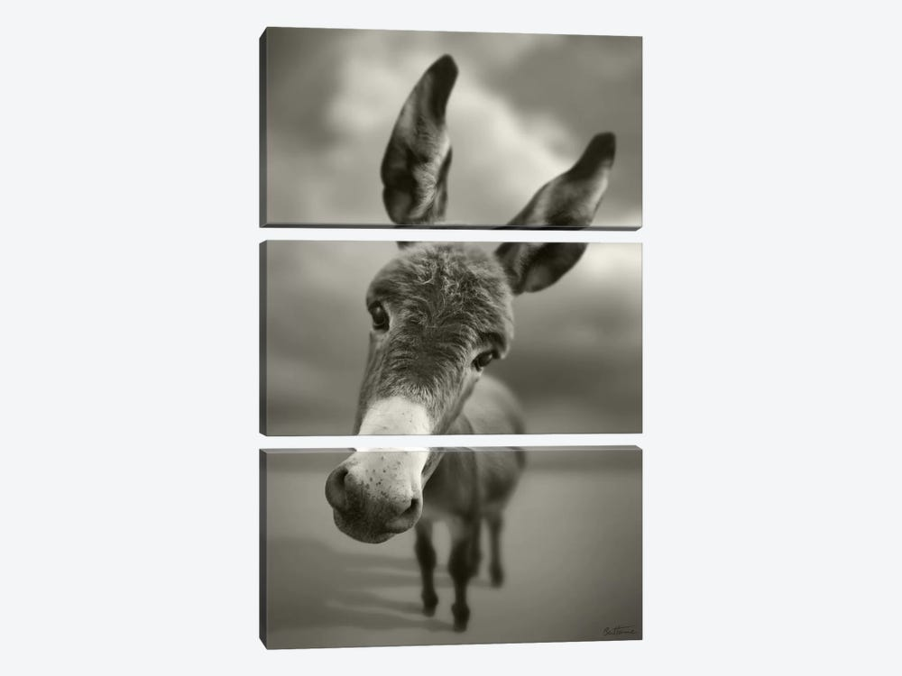 Hey There 3-piece Art Print