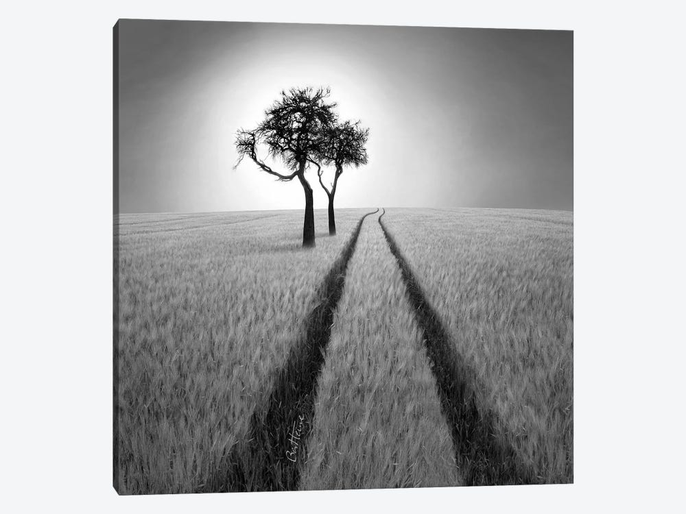 Listen To Wisdom by Ben Heine 1-piece Canvas Art Print