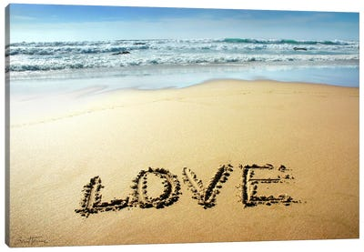 Love Canvas Art Print