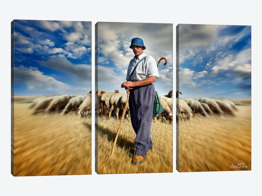 The Shepherd's Call by Ben Heine 3-piece Canvas Wall Art