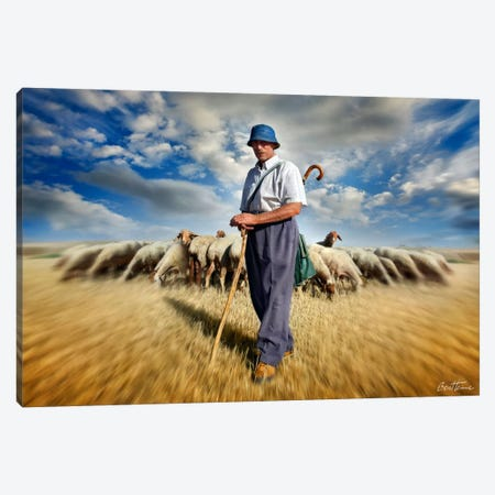 The Shepherd's Call Canvas Print #BHE92} by Ben Heine Canvas Art
