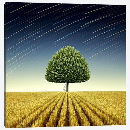Newton's Apple Tree Canvas Print #BHE9} by Ben Heine Art Print
