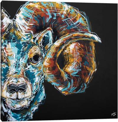 Jason The Ram Canvas Art Print
