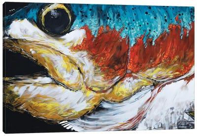 Jones The Rainbow Trout Canvas Art Print