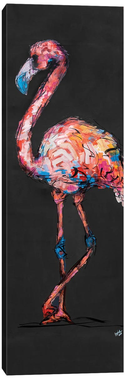 Flossie The Flamingo Canvas Art Print