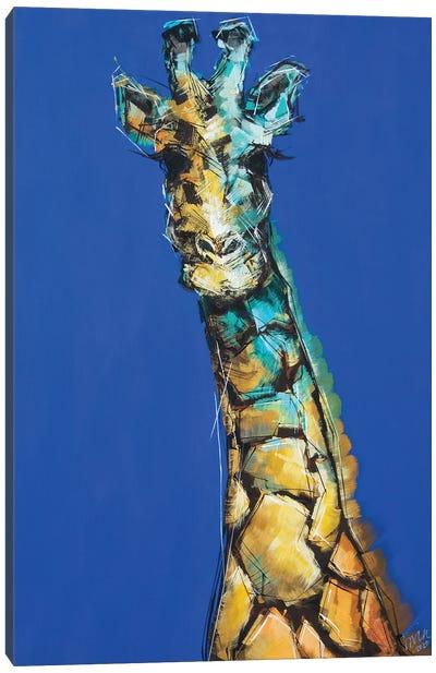 Phil The Giraffe Canvas Art Print