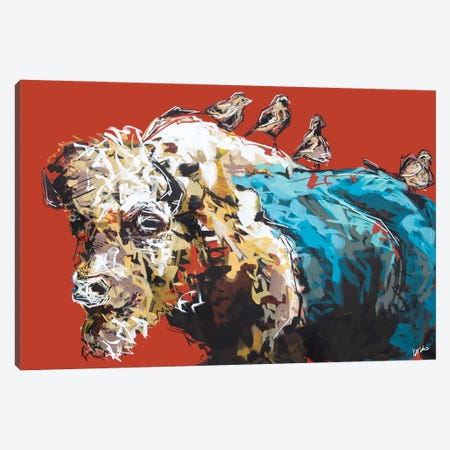 Omar The Bison Canvas Print #BHM41} by Bria Hammock Art Print