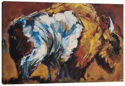 Wilson The Bison Canvas Art Print