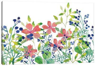 Floral Field II Canvas Art Print