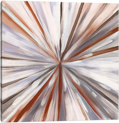 Hot Spin Canvas Art Print