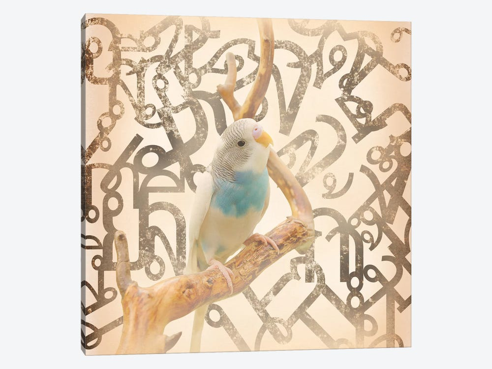 Long Tail Budgie by 5by5collective 1-piece Canvas Art Print