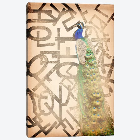 Proud and Gentle Peacock Canvas Print #BITW2} by 5by5collective Canvas Print