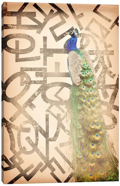 Proud and Gentle Peacock Canvas Art Print