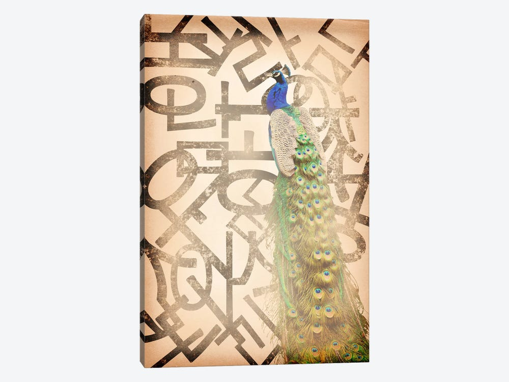Proud and Gentle Peacock by 5by5collective 1-piece Canvas Wall Art