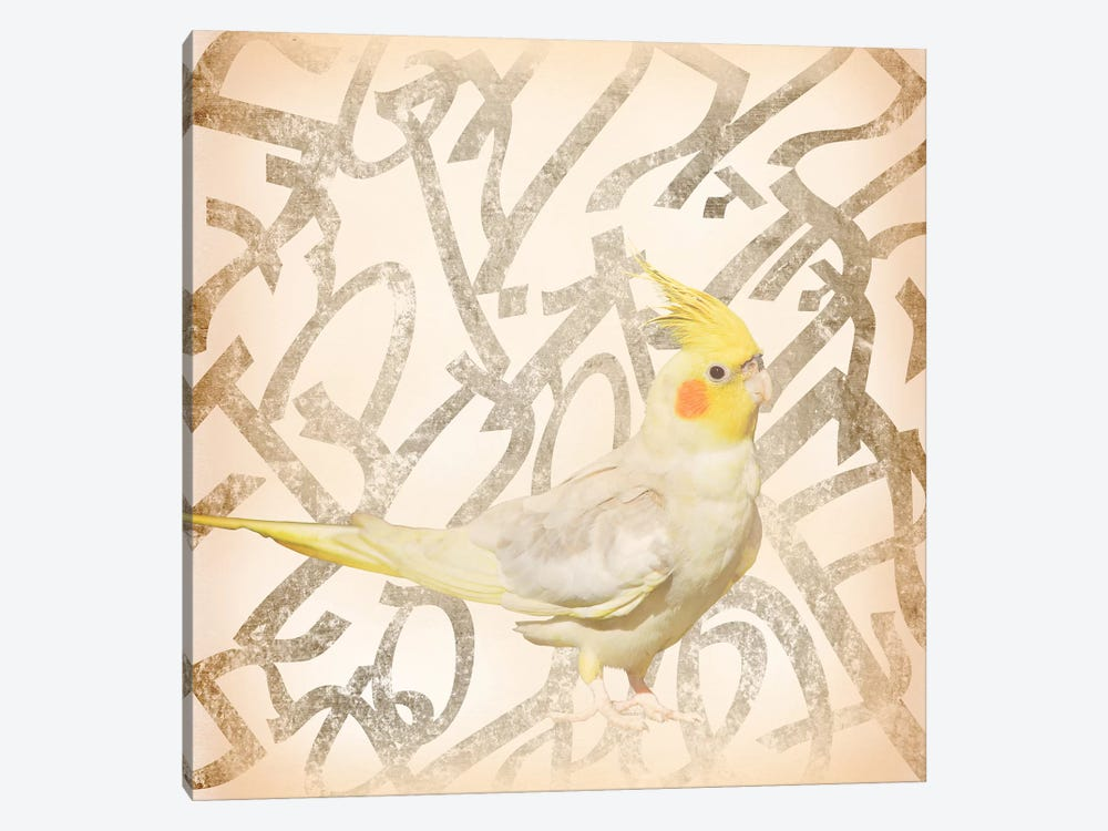 Royal Crested Cockatiel by 5by5collective 1-piece Canvas Art Print