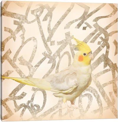 Royal Crested Cockatiel Canvas Art Print