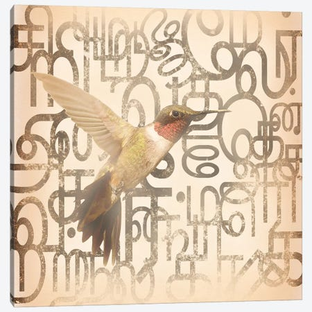 Speedy Winged Hummingbird Canvas Print #BITW5} by 5by5collective Canvas Wall Art