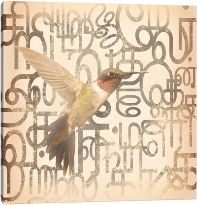 Speedy Winged Hummingbird Canvas Art Print