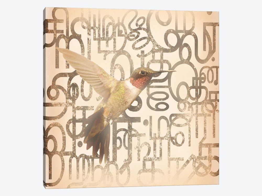 Speedy Winged Hummingbird by 5by5collective 1-piece Canvas Art Print