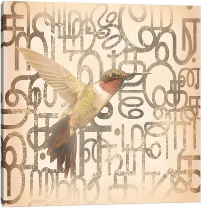Speedy Winged Hummingbird Canvas Art Print