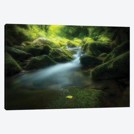 Green Stone Canvas Print #BIZ10} by Bingo Z Canvas Wall Art