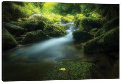 Green Stone Canvas Art Print