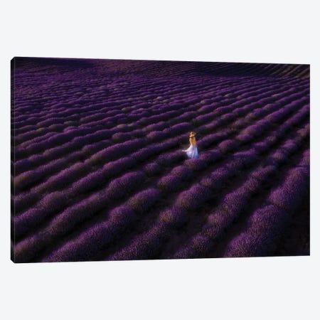 The Woman In Lavender Canvas Print #BIZ11} by Bingo Z Canvas Artwork