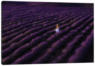 The Woman In Lavender Canvas Art Print