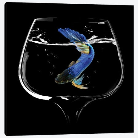 Betta Fish Dance Canvas Print #BJM4} by Antonyus Bunjamin Canvas Artwork