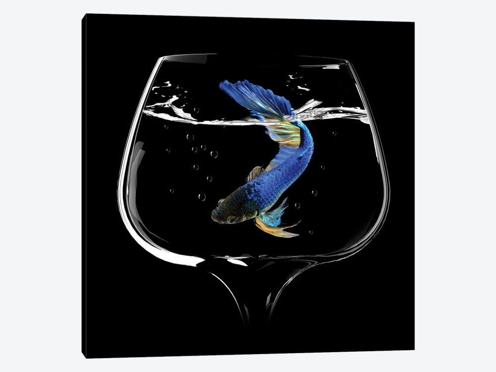 Betta Fish Dance by Antonyus Bunjamin 1-piece Canvas Artwork