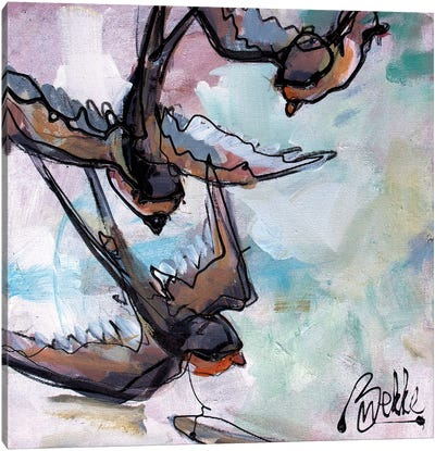 Swaaluwies Canvas Art Print