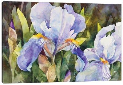 Purple Iris Closeup Canvas Art Print
