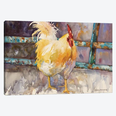 Rooster Fence Canvas Print #BKK132} by Annelein Beukenkamp Canvas Art