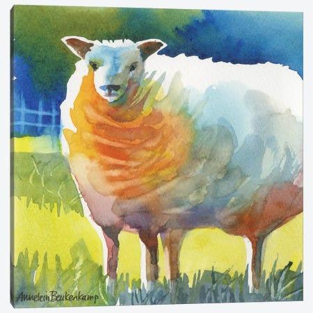 Sheep II Canvas Print #BKK139} by Annelein Beukenkamp Canvas Artwork