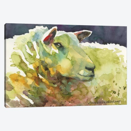 Sheep III Canvas Print #BKK140} by Annelein Beukenkamp Canvas Art Print