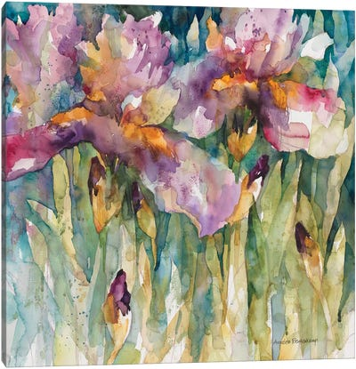 Siberian Iris Canvas Art Print