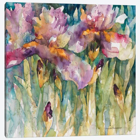 Siberian Iris Canvas Print #BKK142} by Annelein Beukenkamp Canvas Art Print