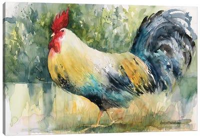 Sly Strutter Canvas Art Print